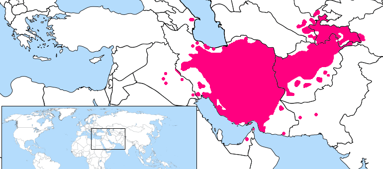 The Persian Language Focus On Farsi